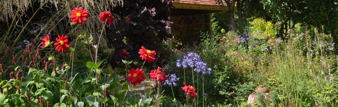 Burrow-Farm-Gardens-19-Large-1100x350