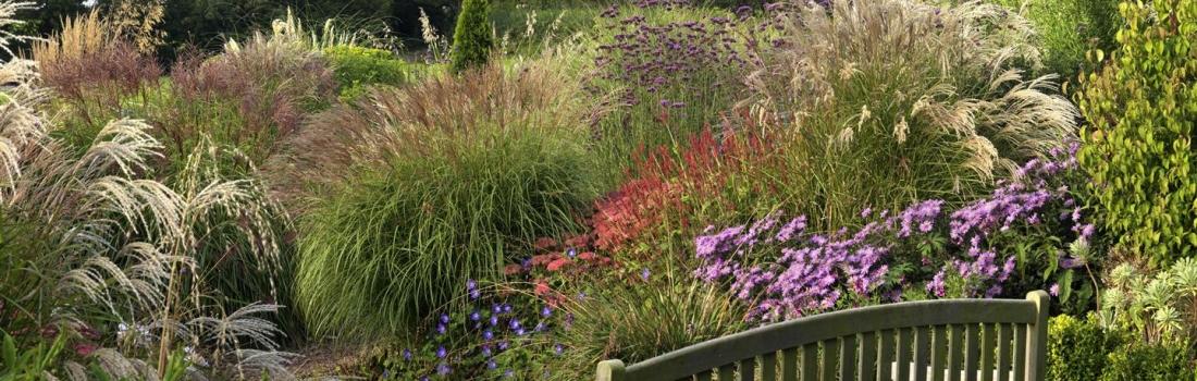 Burrow-Farm-Gardens-29-Large1-1100x350