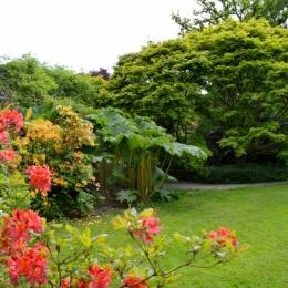 Burrow-Farm-Gardens-12-Medium-1024x681