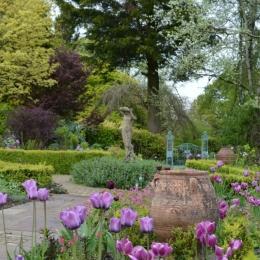 Burrow-Farm-Gardens-14-Rose-Garden-Medium-1024x681