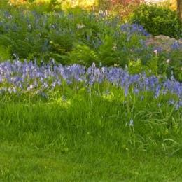 Burrow-Farm-Gardens-17-Large-1024x372