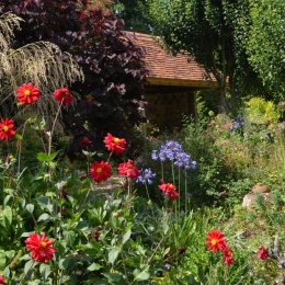 Burrow-Farm-Gardens-19-Large-1024x678