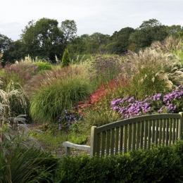 Burrow-Farm-Gardens-29-Large1-1024x768