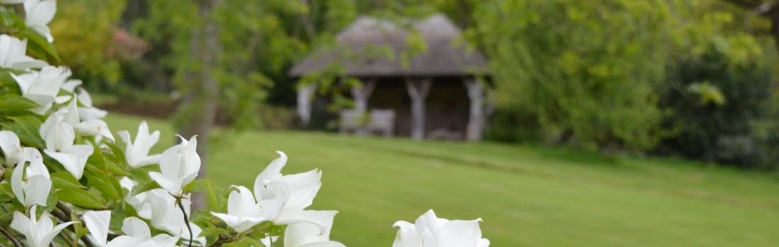 Burrow-Farm-Gardens-7-SummerHouse-Medium-1100x350