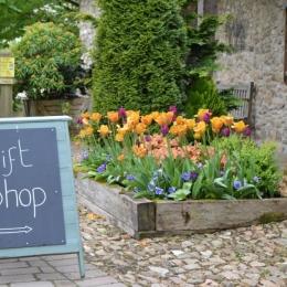Burrow-Farm-Gardens-8-Gift-Shop-Medium-1024x681