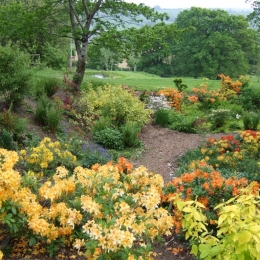 Burrow-Farm-Gardens-8-Large-1024x768