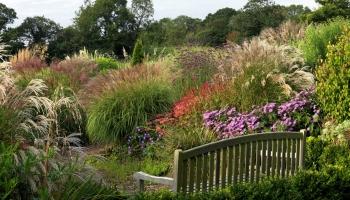 Burrow-Farm-Gardens-Devon-Visit-Coach-7-350x200