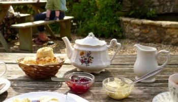 Burrow-Farm-Gardens-Nursery-Gift-shop-Visit-garden-2-1100x350