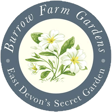 Burrow Farm Gardens Logo